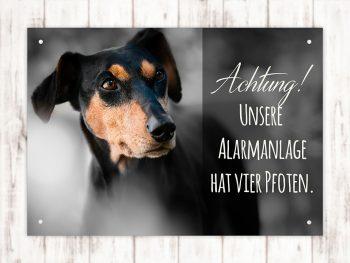 Hundeschild Alarmanlage