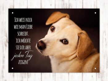 Hundeschild Hundeliebe