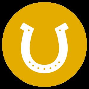 Sophie Kunterbunt Startseite Pferd