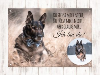 Hundeschild Collage