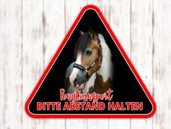 Sophie Kunterbunt Sticker Pferdeanhänger Warndreieck3
