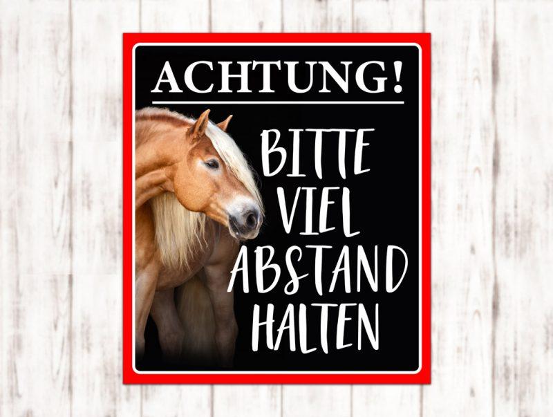 Sophie_Kunterbunt_Sticker_Pferdeanhänger_Hochformat