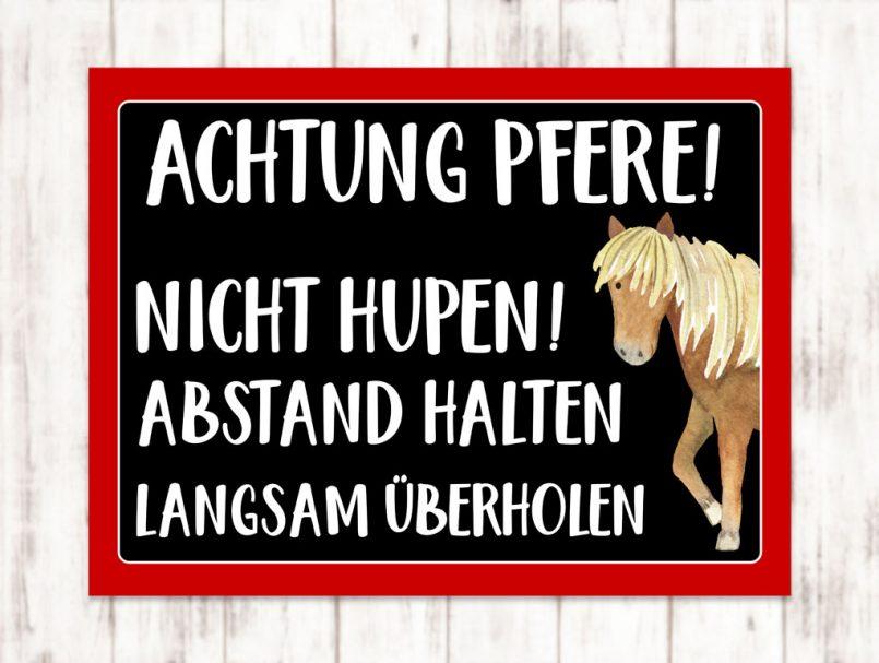 Sophie_Kunterbunt_Sticker_Pferdeanhänger_Abstand_Universell2